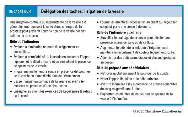 concept délégation infirmier